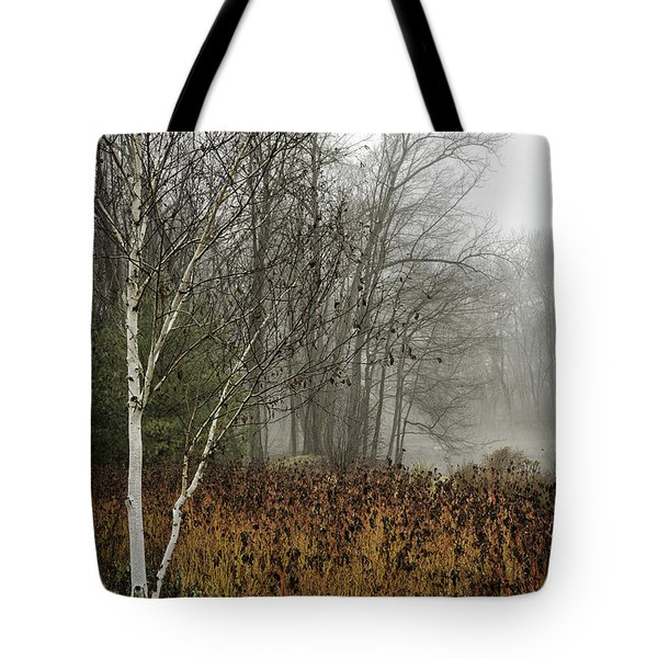 Birch In Winter Tote Bag
