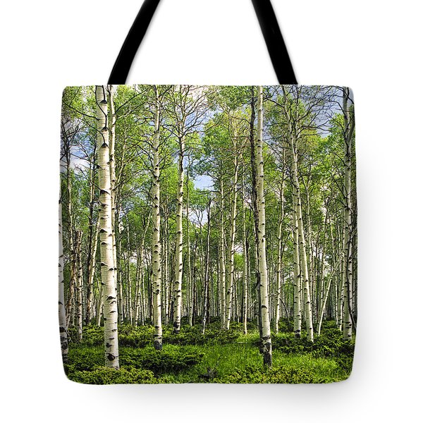 Birch Tree Grove In Summer Tote Bag by Randall Nyhof