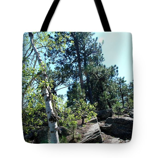 Tote Bag featuring the photograph Birch Trees by Dany Lison