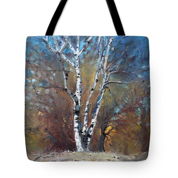 Birch Trees Tote Bag by Ylli Haruni