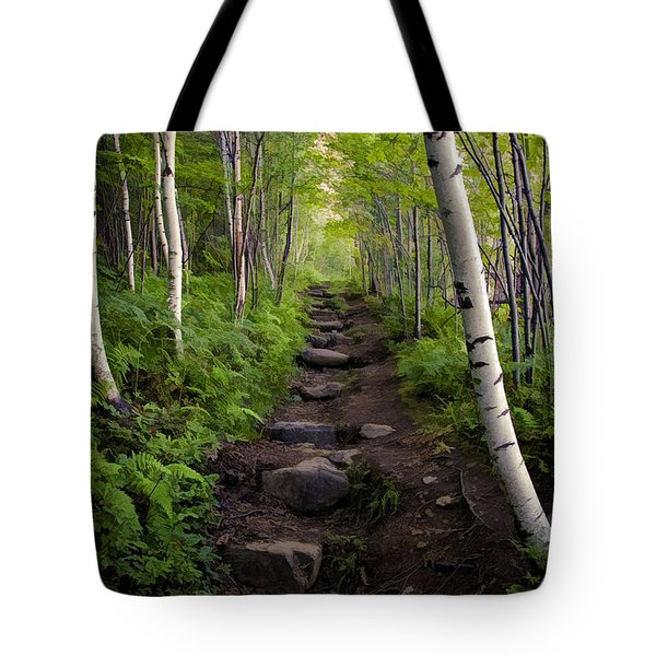 Birch Woods Hike Tote Bag