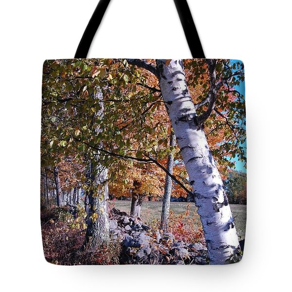 Tote Bag featuring the photograph Birches by Mim White