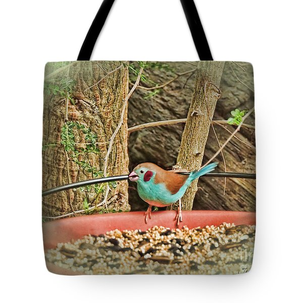 Bird And Feeder Tote Bag by Joan  Minchak
