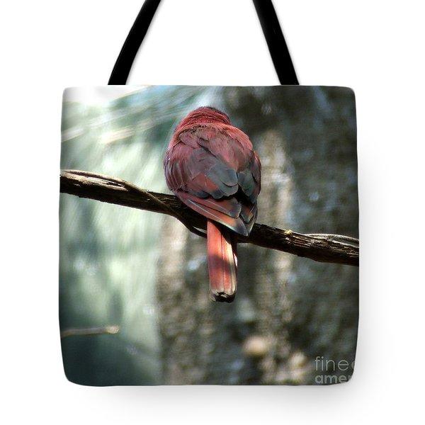 Bird Tote Bag by Andrea Anderegg