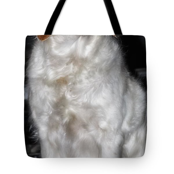 Bird Dog Beauty Tote Bag