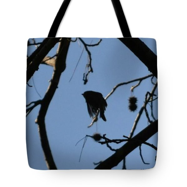 Tote Bag featuring the photograph Bird In Flight by Tara Potts