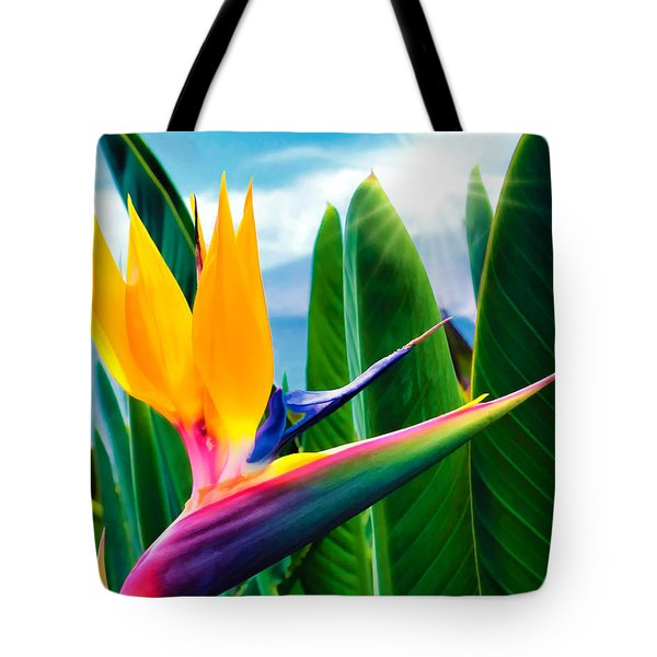 Bird Of Paradise 5 Tote Bag by Dawn Eshelman