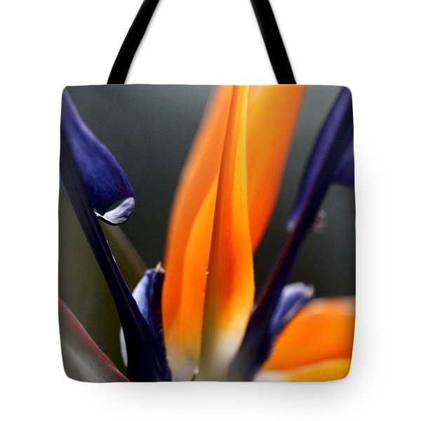 Bird Of Paradise - Crane Flower Tote Bag