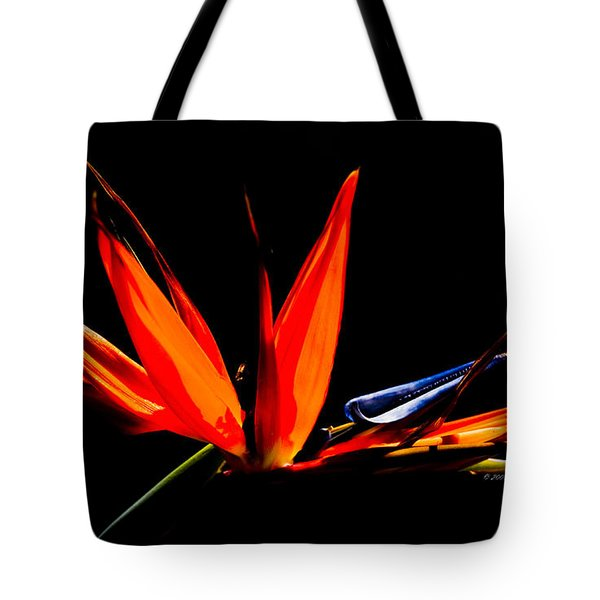 Tote Bag featuring the photograph Bird Of Paradise by Richard J Thompson