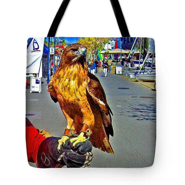 Bird Of Prey At Boat Show 2013 Tote Bag by Joseph Coulombe