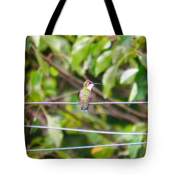 Tote Bag featuring the photograph Bird On A Wire by Nick Kirby