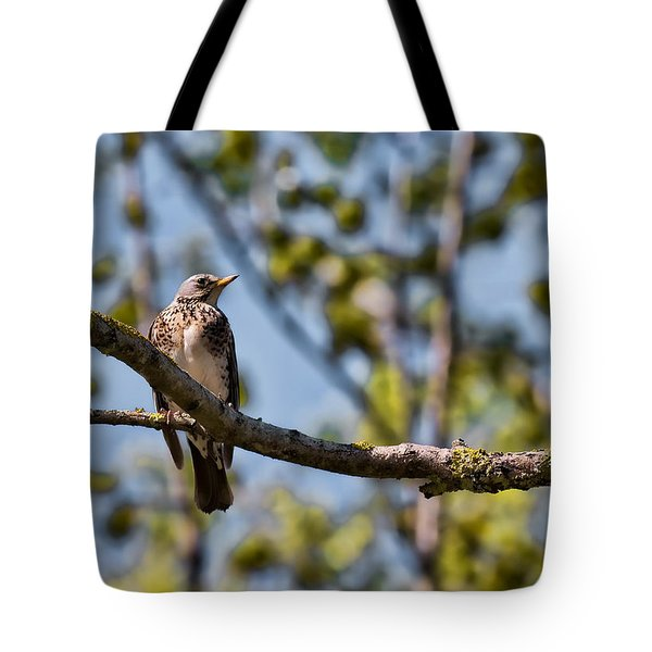Tote Bag featuring the photograph Bird Sitting On Brach by Leif Sohlman