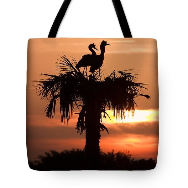 Birds At Sunrise On Florida Palm Tree Tote Bag by Bill Swindaman