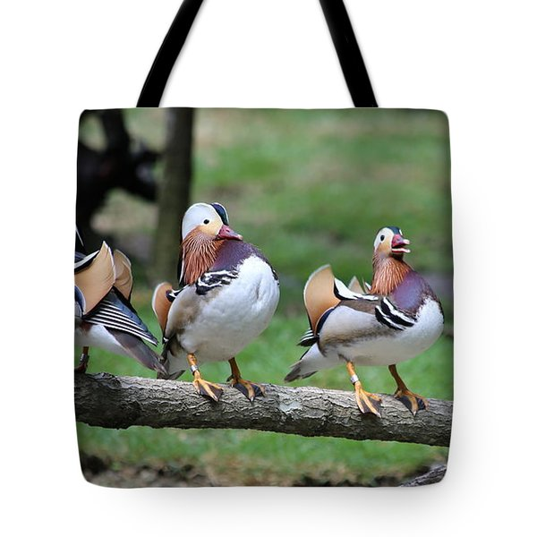 Birds Of A Feather Tote Bag by Marty Fancy