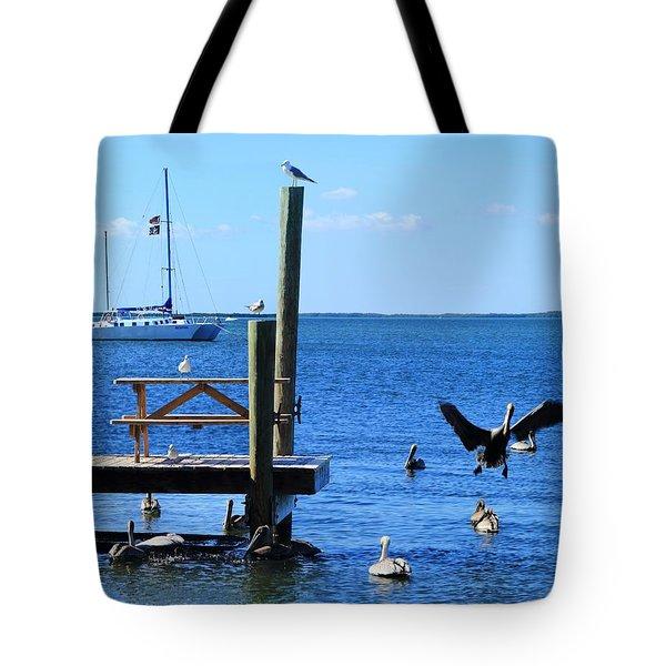 Birds Of Key Largo Tote Bag
