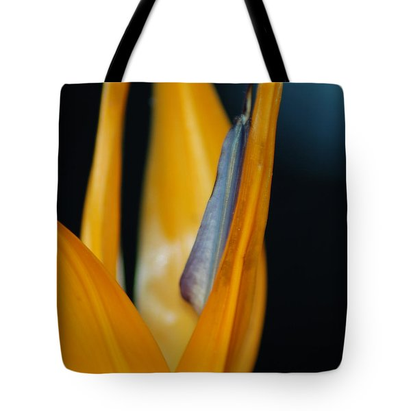 Tote Bag featuring the photograph Birds Of Paradise by Matt Harang