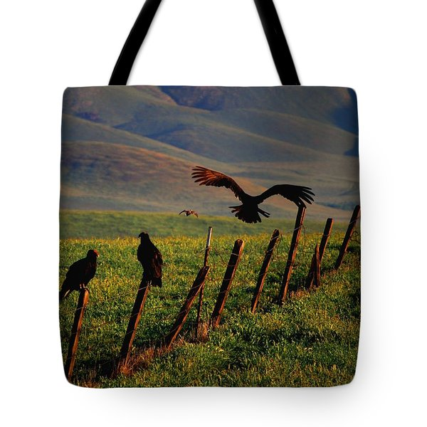 Tote Bag featuring the photograph Birds On A Fence by Matt Harang