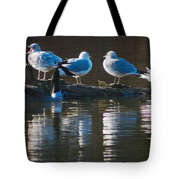 Birds On A Log Tote Bag