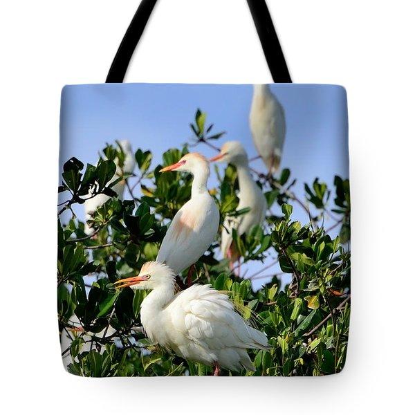 Birds Quartet Tote Bag