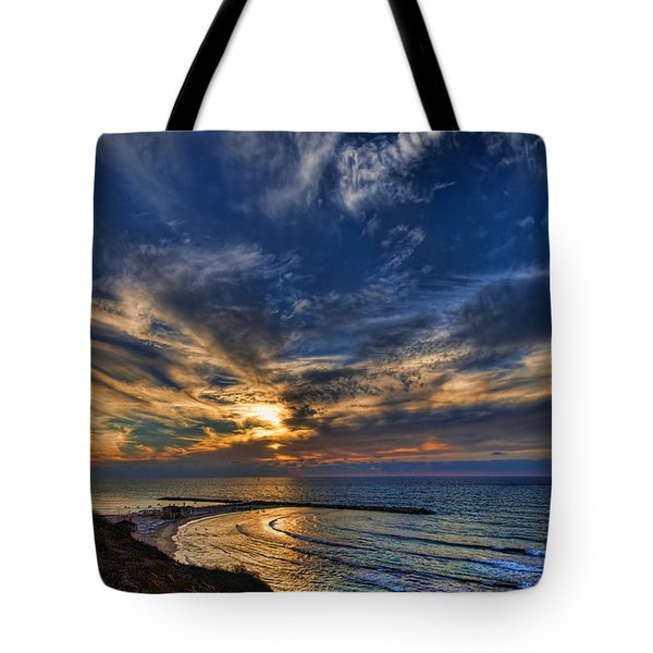 Tote Bag featuring the photograph Birdy Bird At Hilton Beach by Ron Shoshani