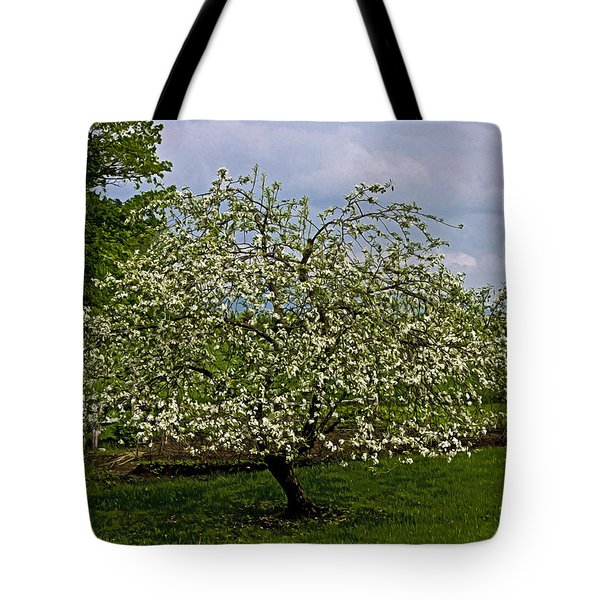 Tote Bag featuring the painting Birth Of Apples by John Haldane