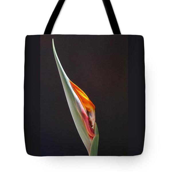 Birth Of Paradise Tote Bag