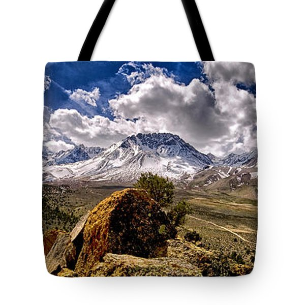 Bishop California Tote Bag by Cat Connor