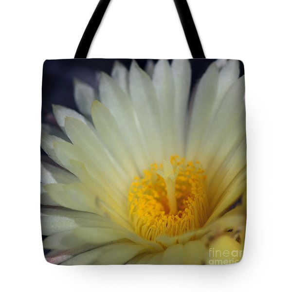 Bishop's Cap IIi Tote Bag