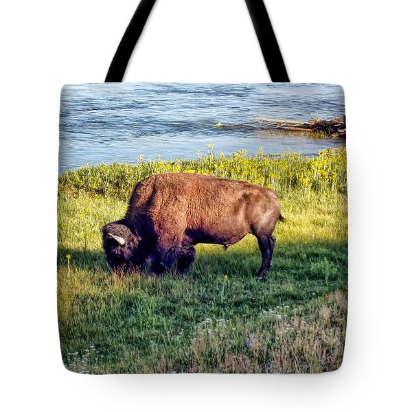 Tote Bag featuring the photograph Bison 4 by Dawn Eshelman