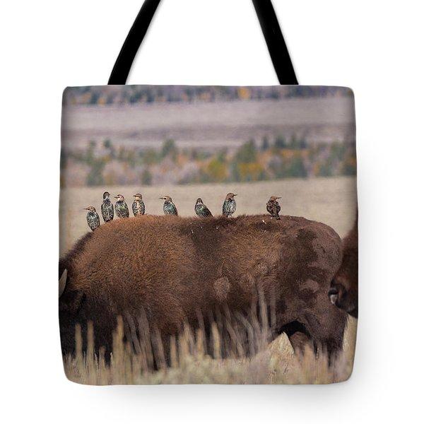 Bison And Buddies Tote Bag