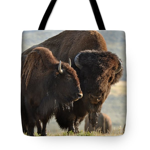 Bison Friends Tote Bag