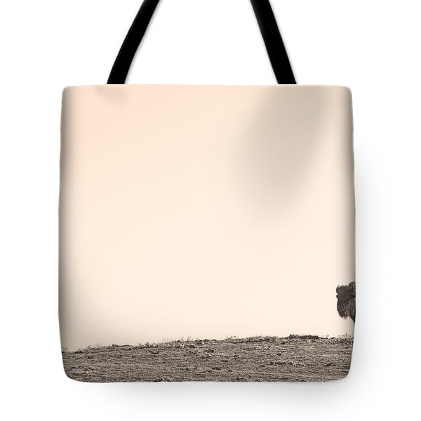 Bison Hill  Tote Bag by James BO  Insogna