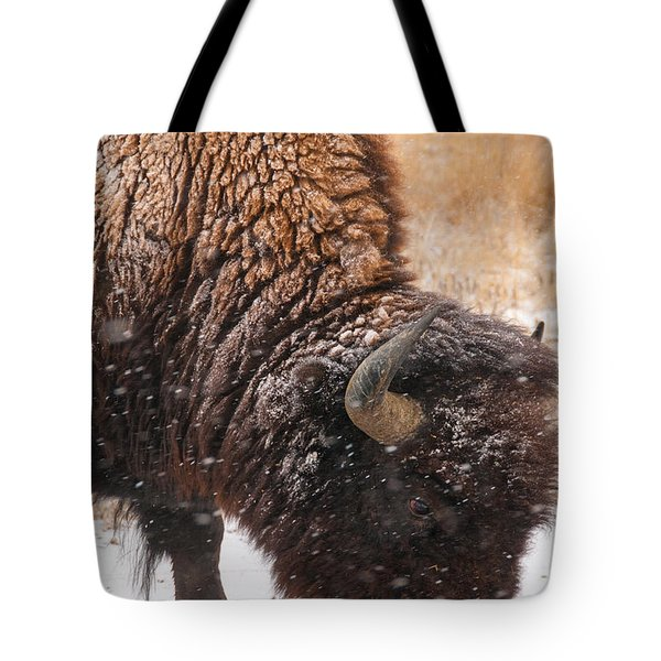 Bison In Snow_1 Tote Bag