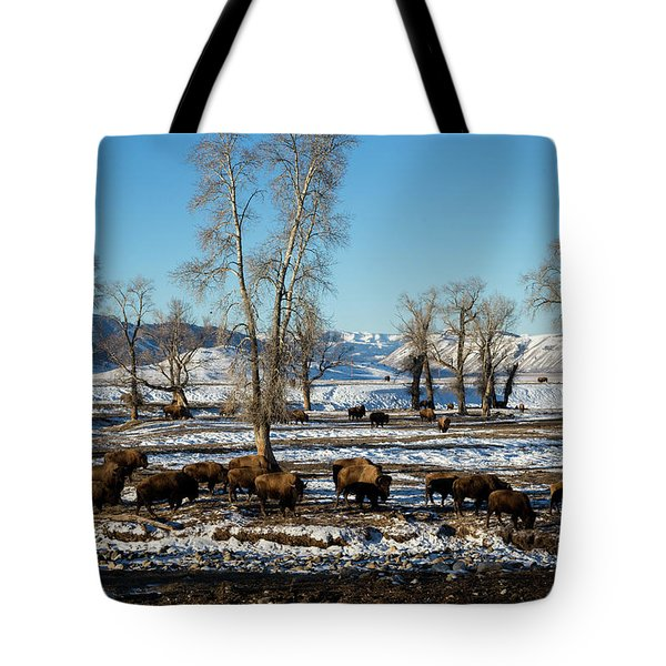 Bison In The 24,700-acre National Elk Tote Bag