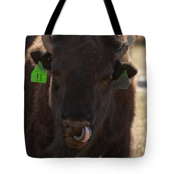 Bison One Horn Tongue In Nose Tote Bag by Melany Sarafis