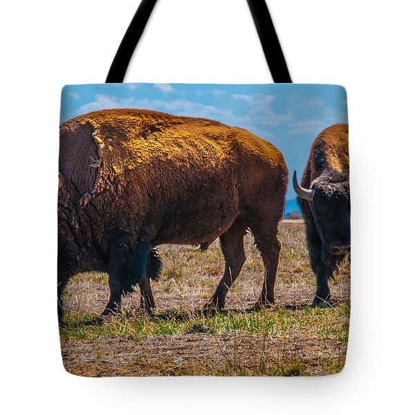 Bison Pair_1 Tote Bag
