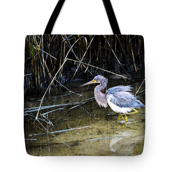 Bittern At Dusk  Tote Bag by Mary Ward