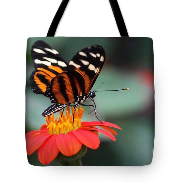 Black And Brown Butterfly On A Red Flower Tote Bag