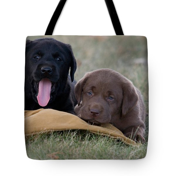 Black And Chocolate Labradors Tote Bag by Linda Freshwaters Arndt