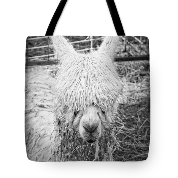 Black And White Alpaca Photograph Tote Bag by Keith Webber Jr