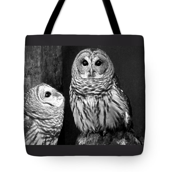 Black And White Barred Owls Tote Bag