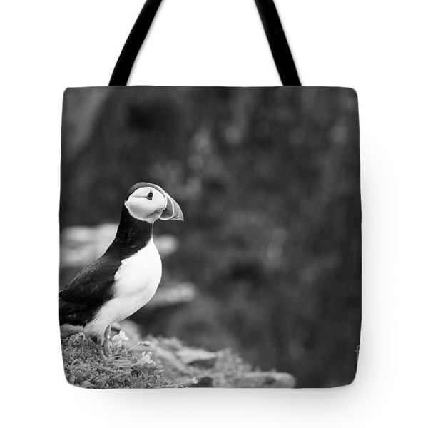 Black And White Black And White Bird Tote Bag by Anne Gilbert
