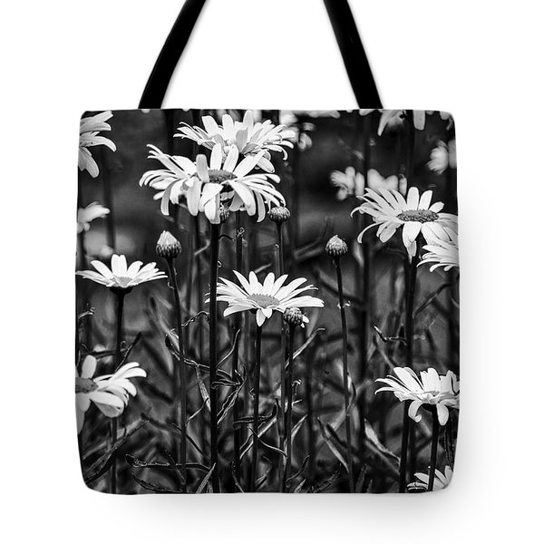 Black And White Daisies Tote Bag by Mary Carol Story