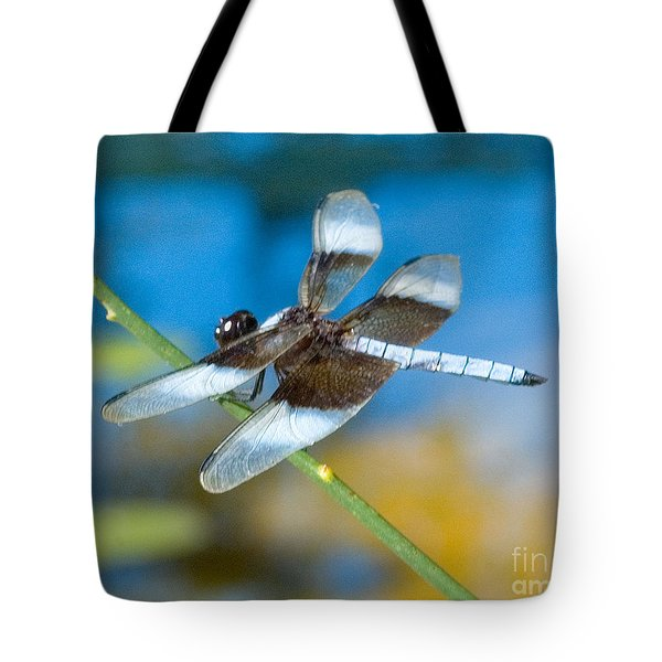 Tote Bag featuring the photograph Black And White Dragonfly by Mae Wertz