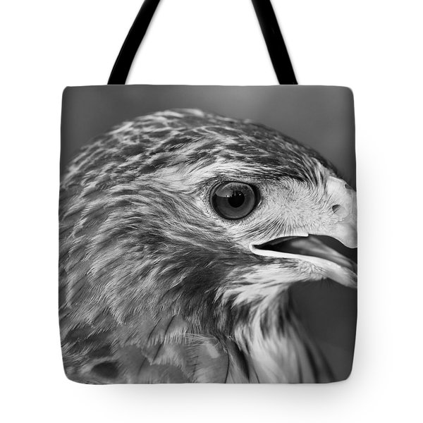 Black And White Hawk Portrait Tote Bag by Dan Sproul