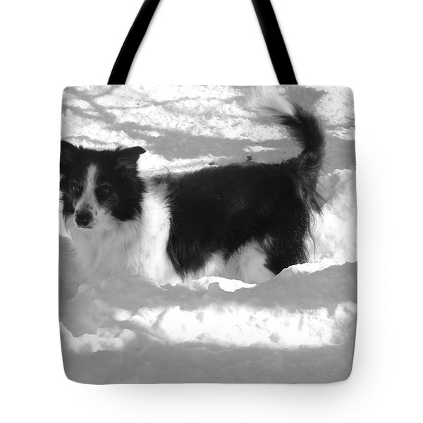 Black And White In The Snow Tote Bag by Michael Porchik