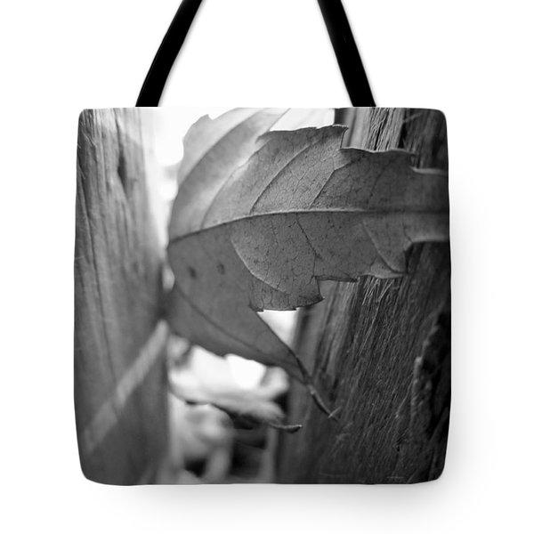 Black And White Leaf At Fort Watauga Tote Bag