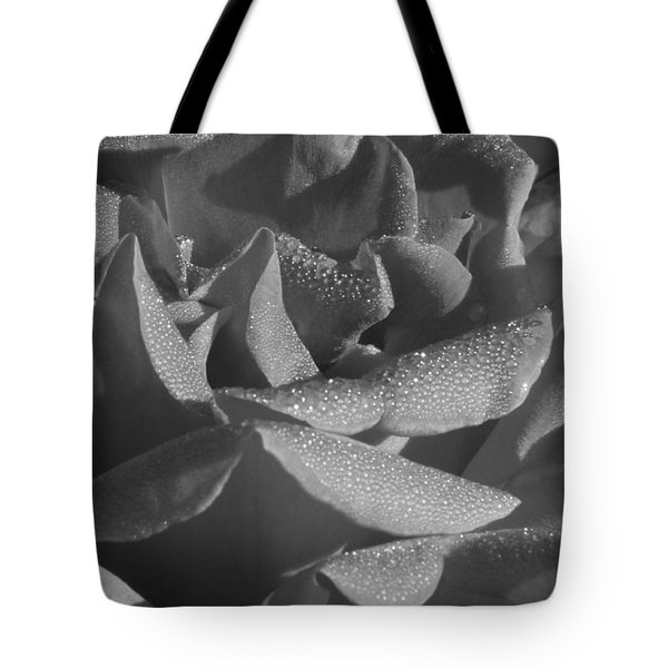 Black And White Morning Rose Tote Bag