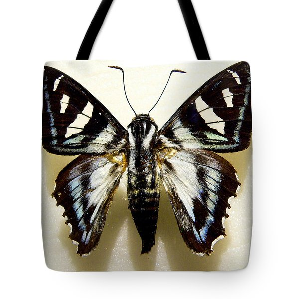 Tote Bag featuring the photograph Black And White Moth by Rosalie Scanlon
