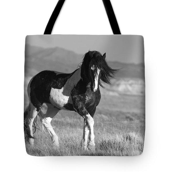 Black And White Stallion Walks Tote Bag